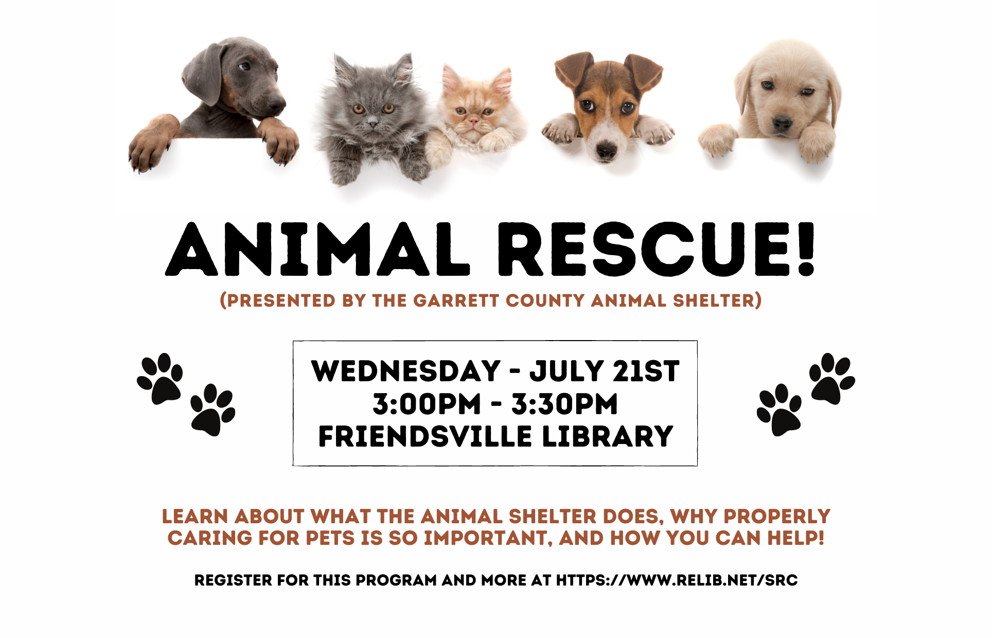 Animal Rescue! Garrett County Animal Shelter