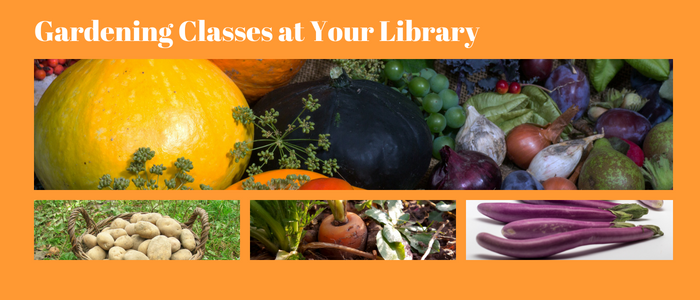 Gardening classes at your library