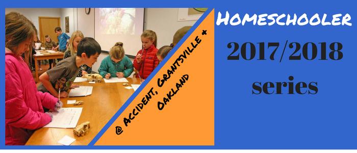HomeSchooler Series 2017-2018